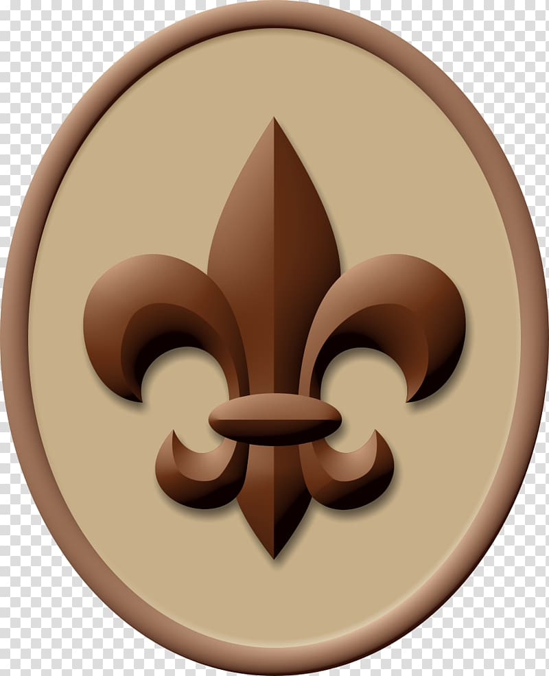 Boy Scout Handbook Ranks in the Boy Scouts of America.