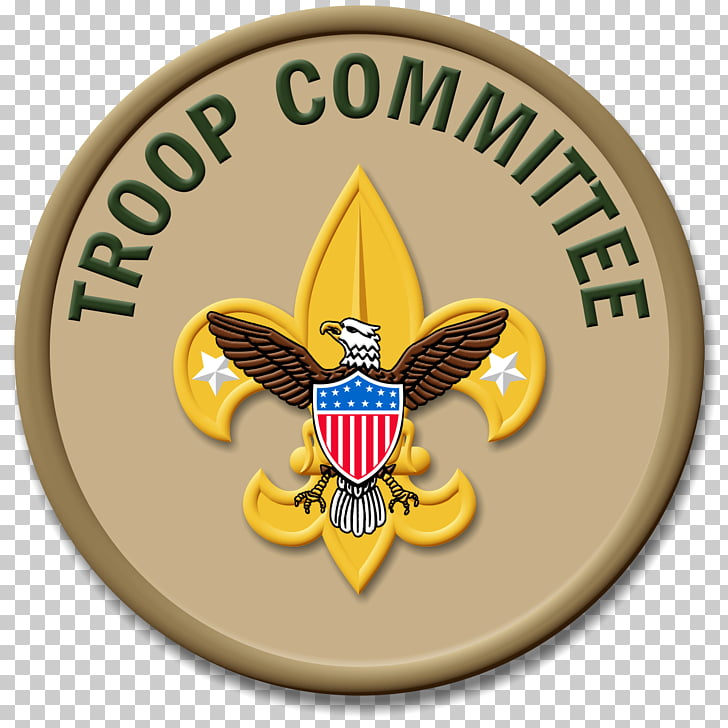 Ranks in the Boy Scouts of America Eagle Scout Merit badge Scouting.