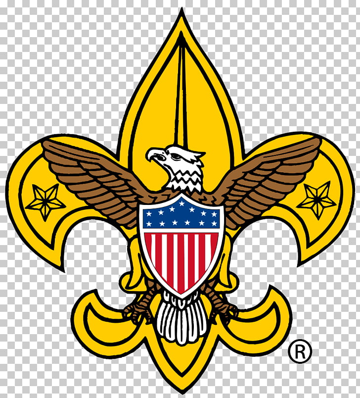 Boy Scouts of America Cub Scouting Boy Scouting Eagle Scout.