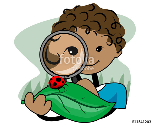 Magnifying Glass Clipart For Kids 20 Free Cliparts
