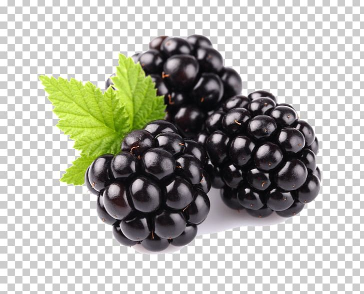 Tayberry Blackberry Fruit Raspberry PNG, Clipart, Berry.