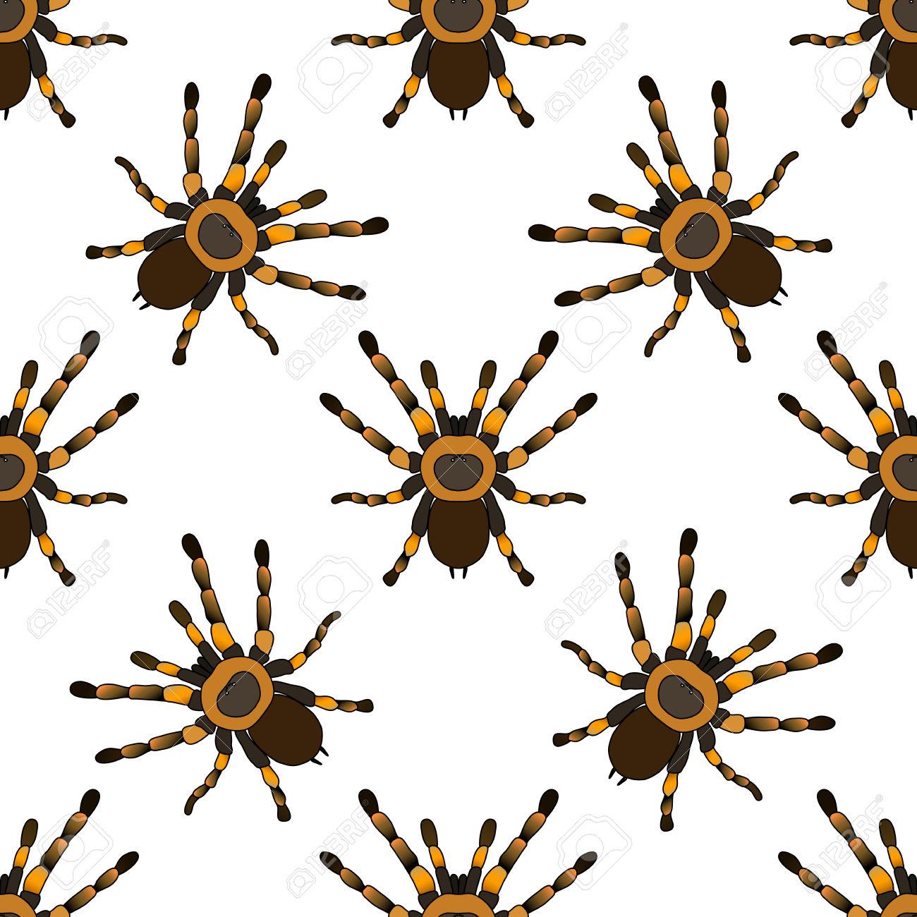 Seamless Pattern With . Tarantula Spider Brachypelma Smithi Hand.