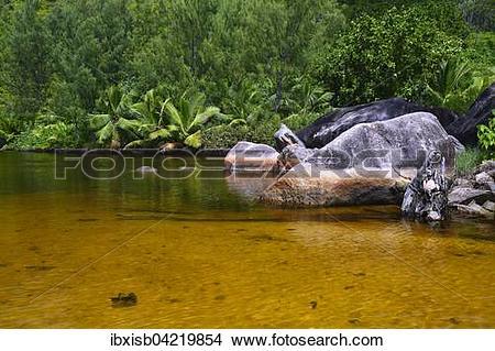 Stock Photo of Brackish lagoon on the beach of Anse Lazio, Praslin.