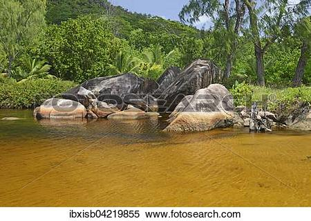 Stock Image of Brackish lagoon on the beach of Anse Lazio, Praslin.