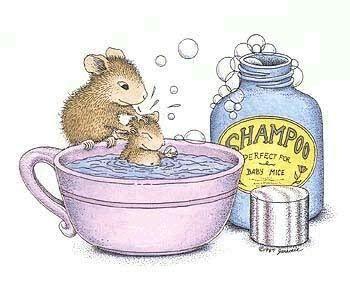 1000+ images about Des souris on Pinterest.