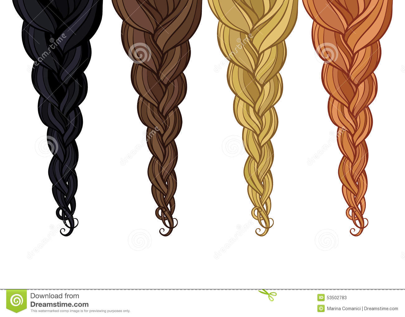 Hair Braid Stock Illustrations.
