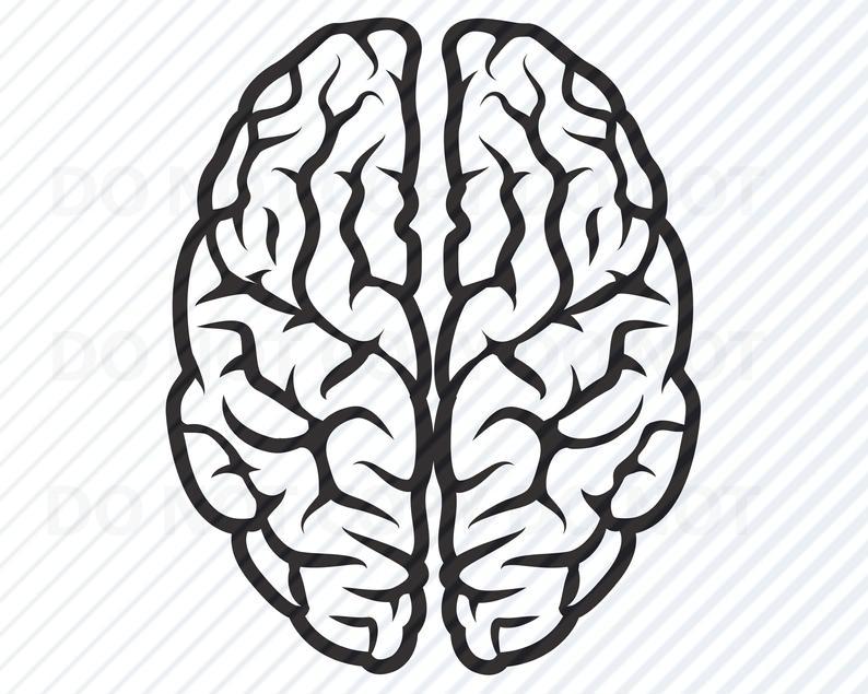 Brain SVG File For cricut.