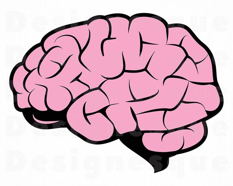 Brain SVG, Mind Svg, Brain Clipart, Brain Files for Cricut, Brain Cut Files  For Silhouette, Brain Dxf, Brain Png, Brain Eps, Brain Vector.