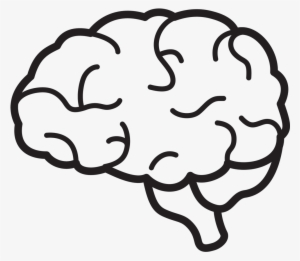 Brain Clipart PNG, Transparent Brain Clipart PNG Image Free Download.