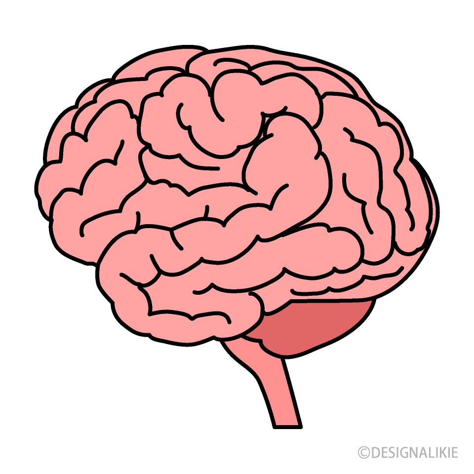 Free Brain Clipart Image|Illustoon.