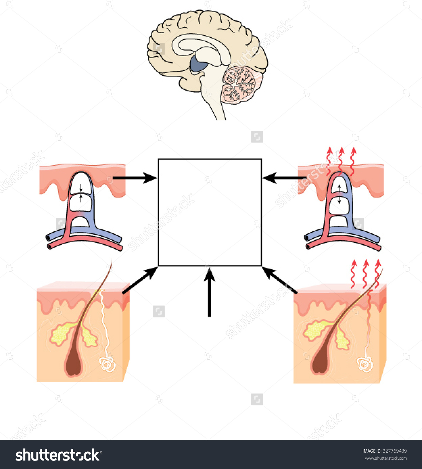 Showing post & media for Cartoon brain controlling body.