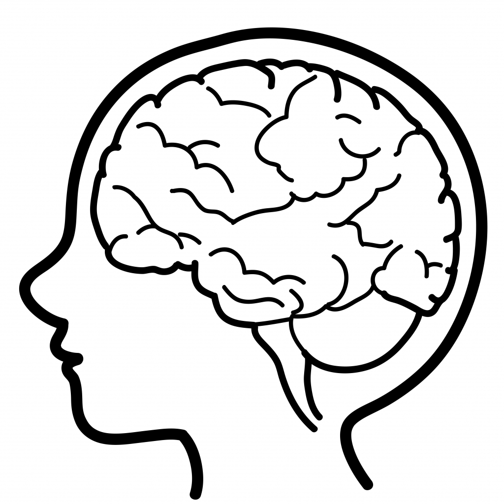 Free Brain Drawing Cliparts, Download Free Clip Art, Free.