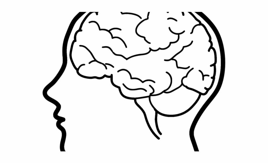 Drawn Brain Drawing Easy Drawings Of Brain.