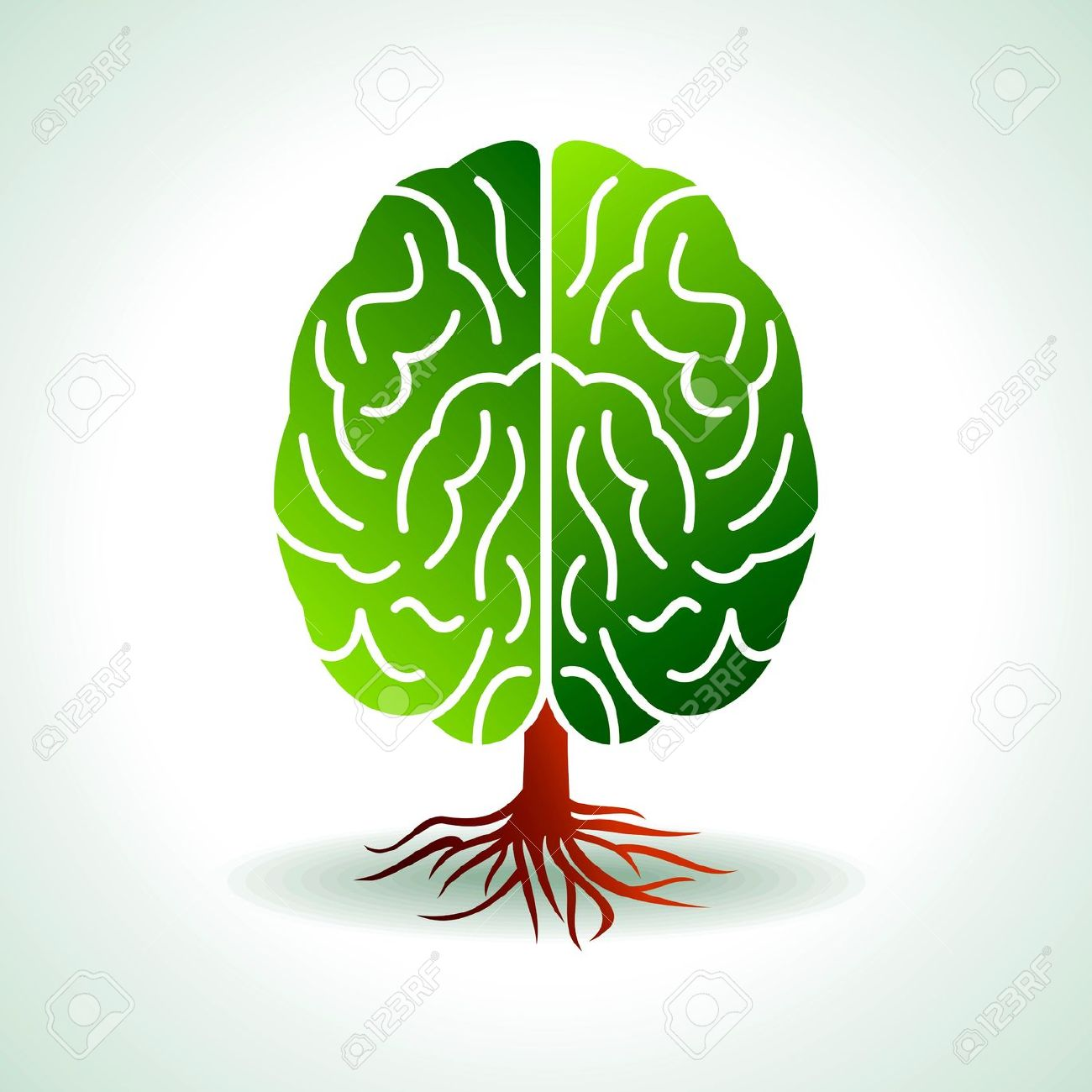5,824 Brain Growth Stock Vector Illustration And Royalty Free.