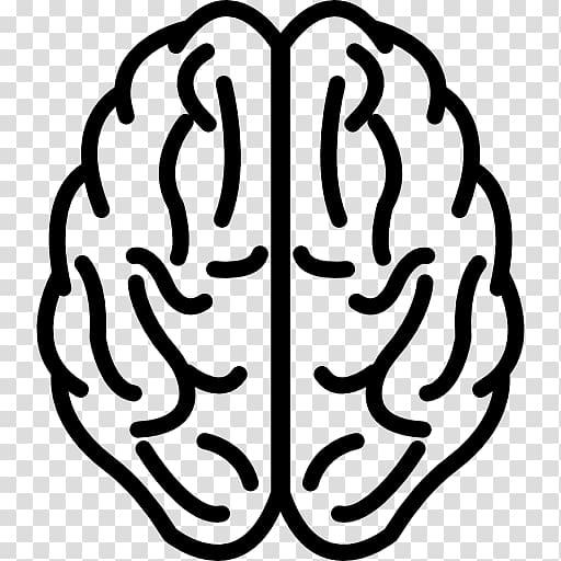 Human brain Logo, upper transparent background PNG clipart.