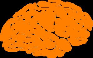 Orange Brain Logo Clip Art at Clker.com.