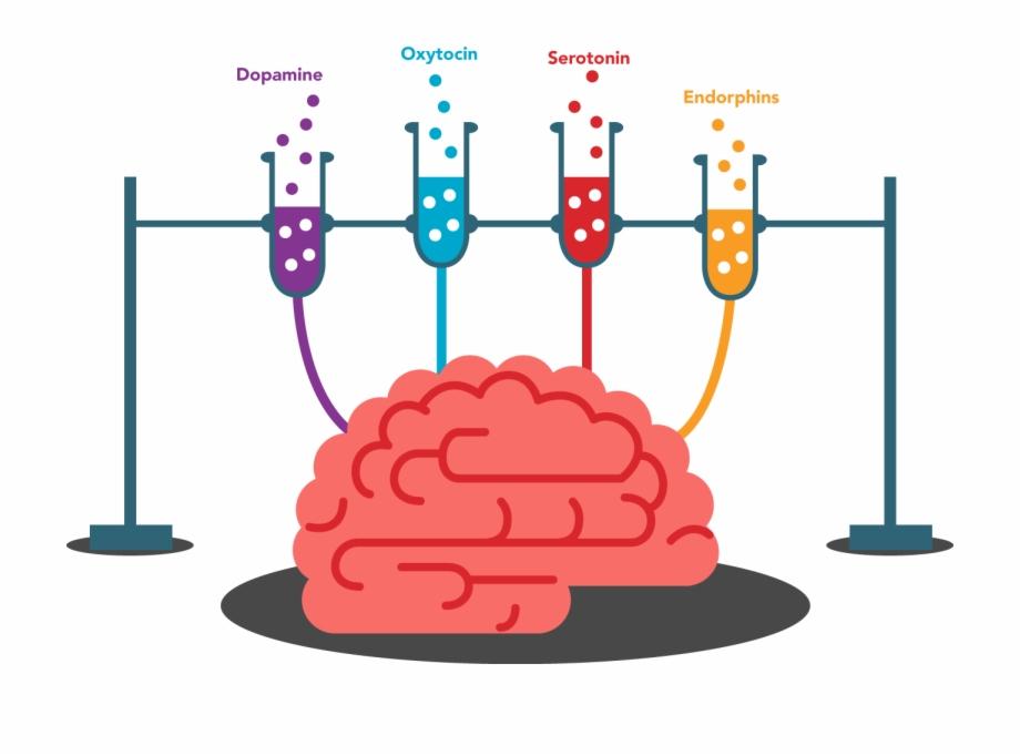 Brain Memory Clipart.