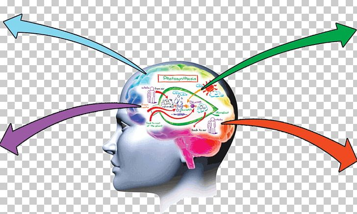 Memory Improvement Brain Memorization Learning PNG, Clipart, Amnesia.