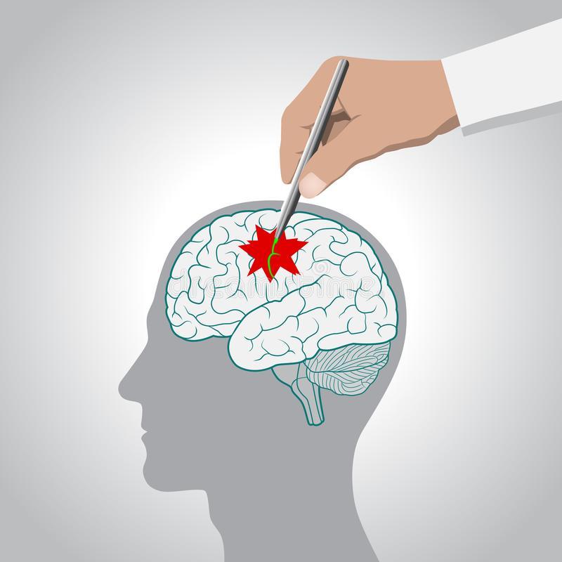 Brain Memory Stock Illustrations.
