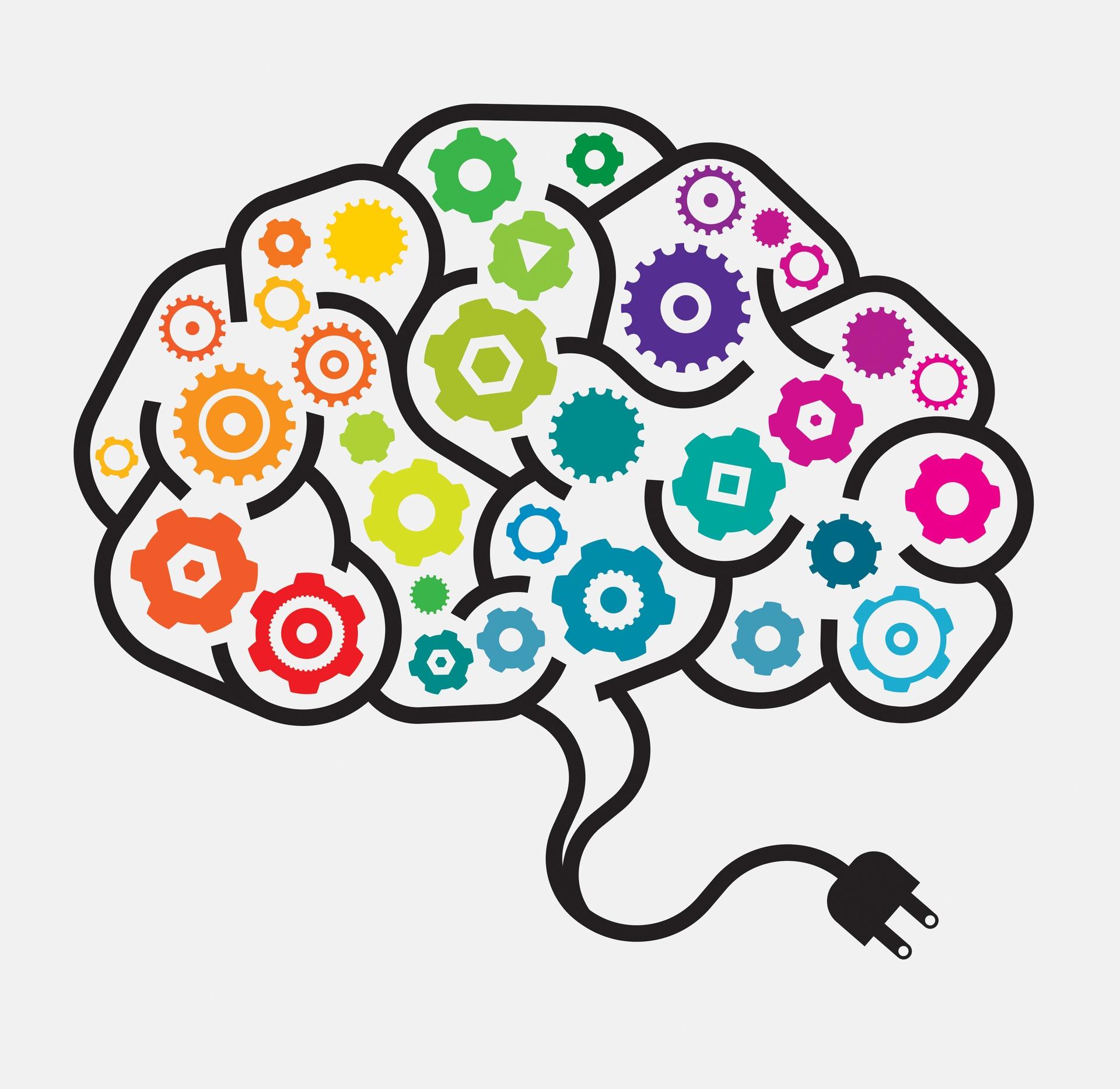 Mejora tu memoria con el Brain Gym.