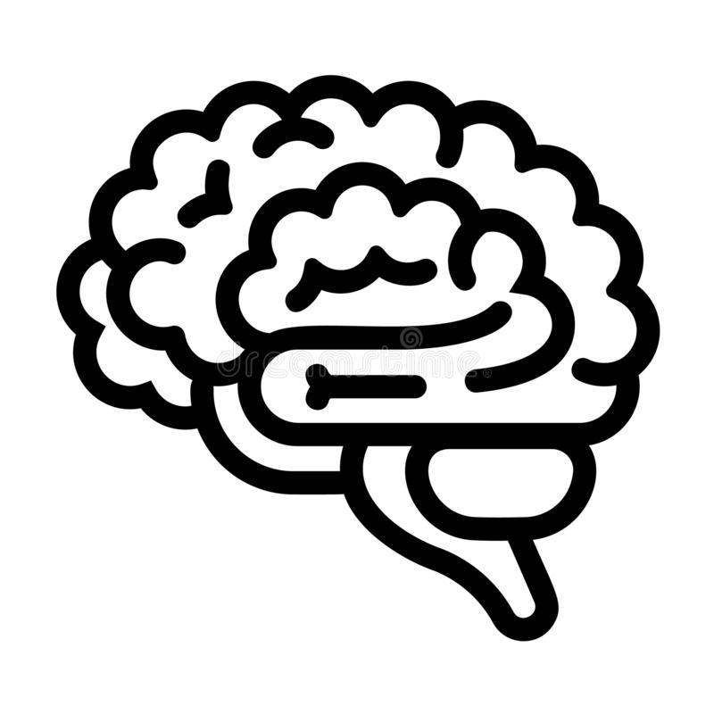 Brain Outline Stock Illustrations.