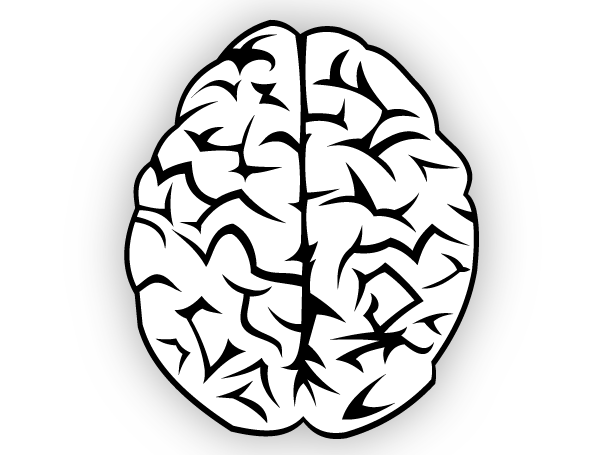 brain outline clipart black and white - Clipground