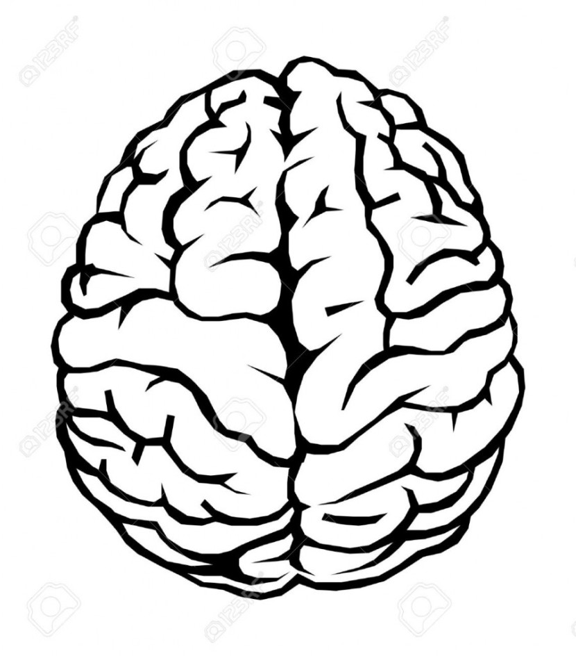 Best Brain Clipart Black and White #28899.