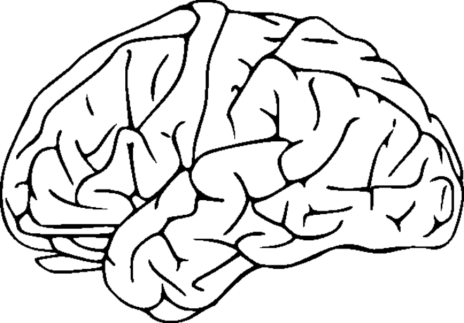 Brain Coloring Page.