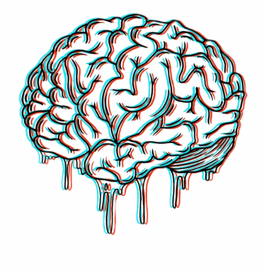 Huge Collection Of Brain Drawing Tumblr Download More.