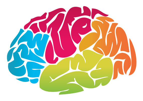 Brain Colour Drawing transparent PNG.