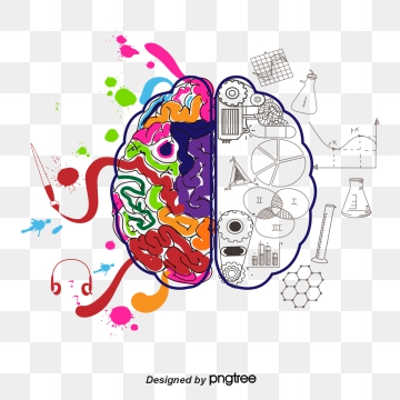 Cartoon Brain PNG Images.