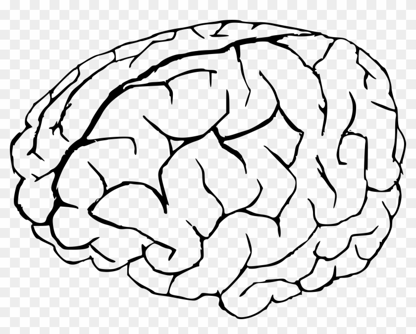 Cartoon Brain Png.