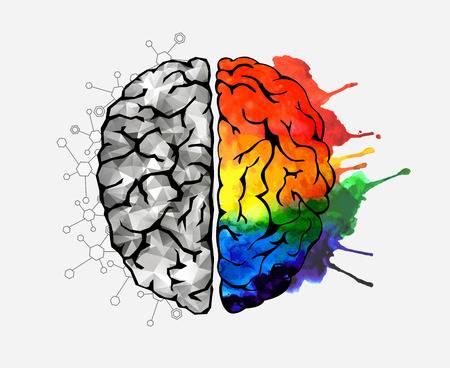 32,345 Brain Power Stock Vector Illustration And Royalty Free Brain.