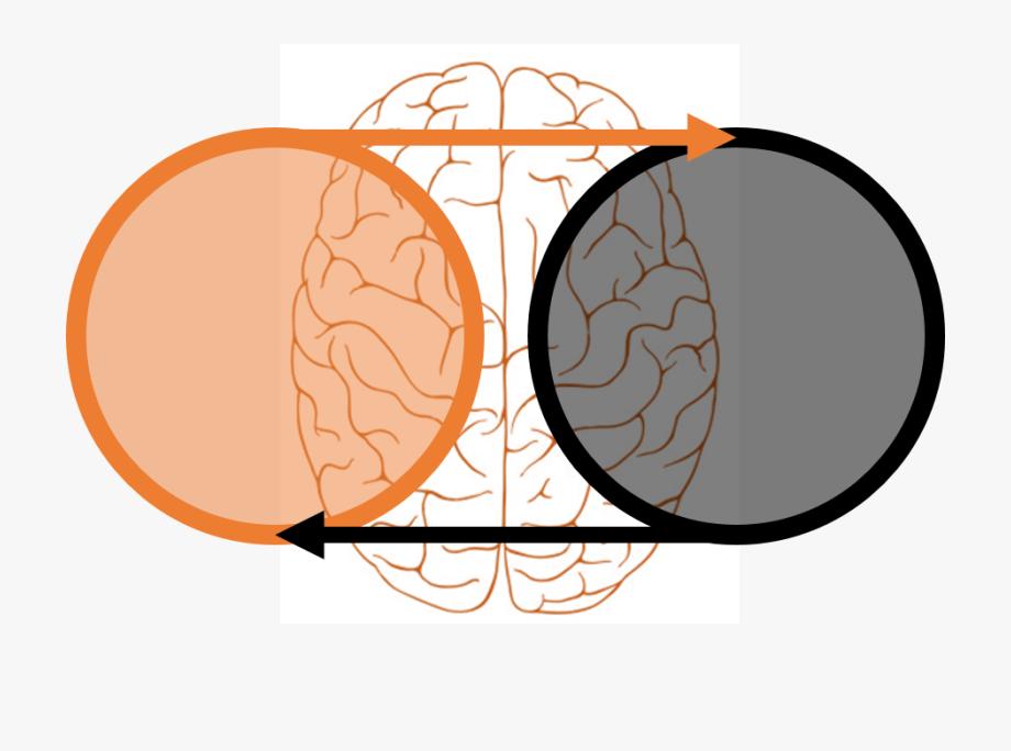 Power Clipart Genius Brain.