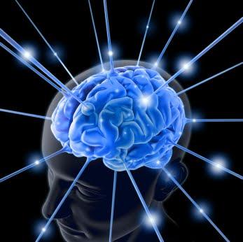 Evidence Builds that Meditation (Salat / Zikr Illahi) Strengthens.
