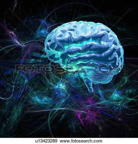 Stock Photograph of Brain research, conceptual artwork u13423289.