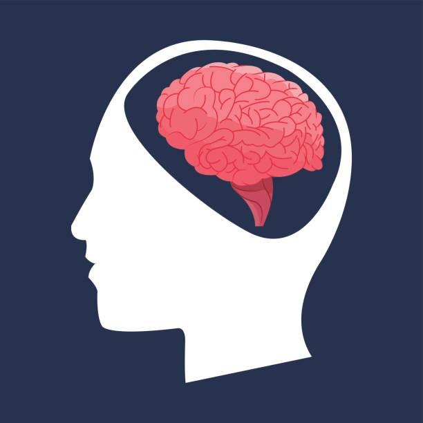 Best Neurosurgery Illustrations, Royalty.