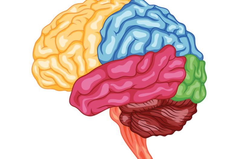 Brain Cancer vs. Benign Tumors.