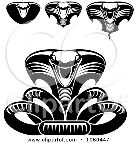 Royalty Free Stock Illustrations of Cobras by Vector Tradition SM.