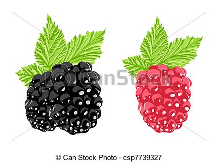 Bramble Vector Clip Art Royalty Free. 136 Bramble clipart vector.