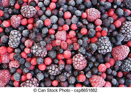 Brambleberry Stock Photo Images. 327 Brambleberry royalty free.