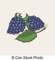 Brambleberry Vector Clip Art Royalty Free. 7 Brambleberry clipart.