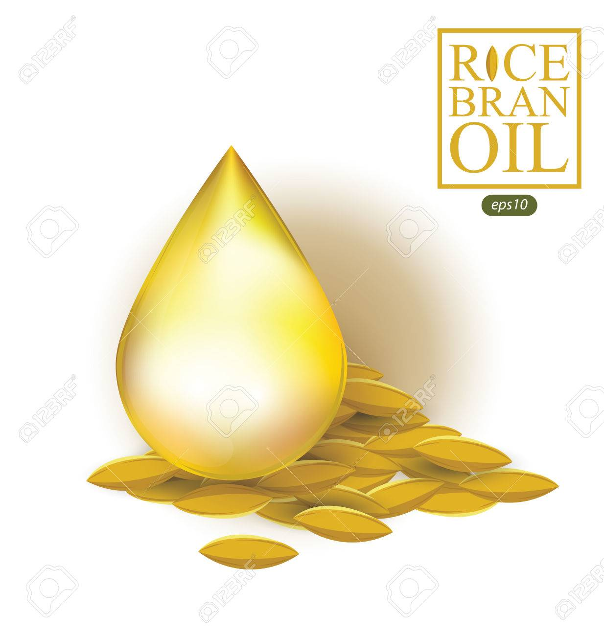 Rice bran oil. Vector illustration..