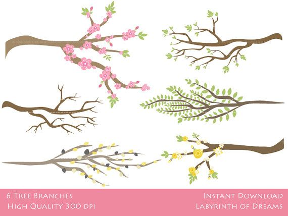 Branch branches clipart - Clipground