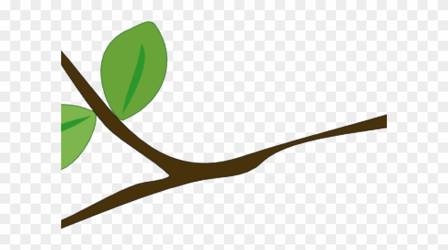 Tree Branch Clipart.