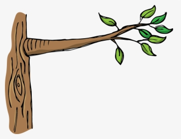 Tree Branches PNG Images, Free Transparent Tree Branches.