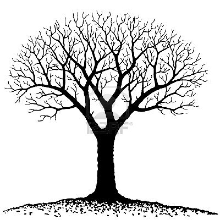 Branch Clipart Free No Copyright