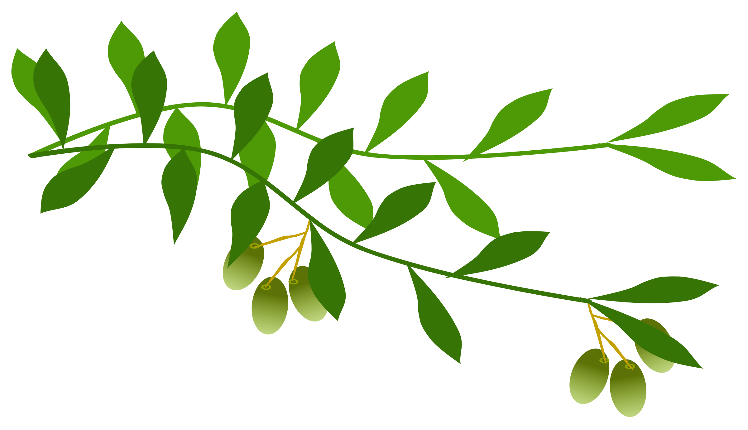 Free Tree Branch Clipart Png, Download Free Clip Art, Free Clip Art.