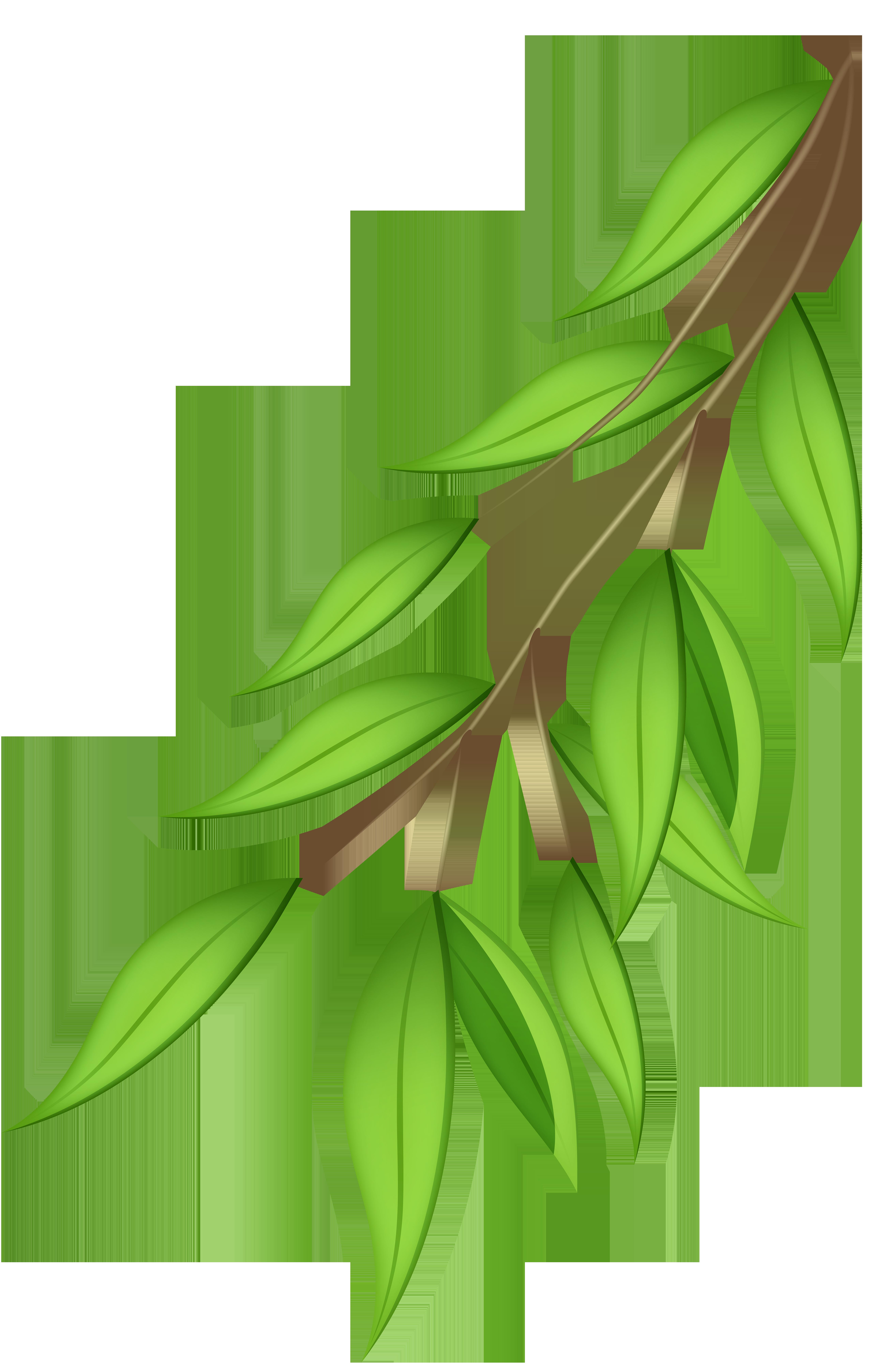 Green Branch PNG Transparent Clip Art Image.