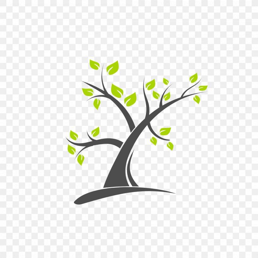 Tree Branch Logo, PNG, 2000x2000px, Tree, Branch, Drawing.